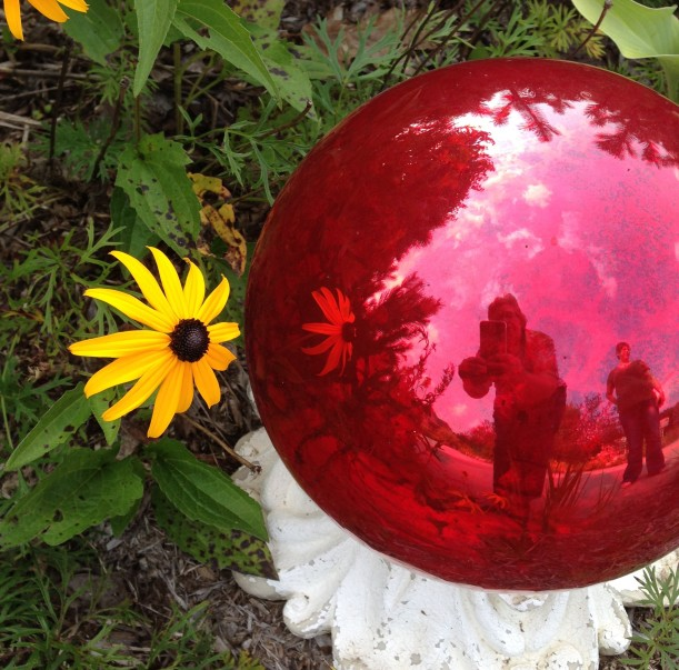 daisy red ball3