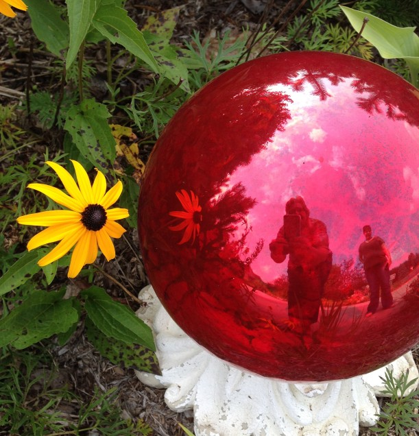 daisy red ball4